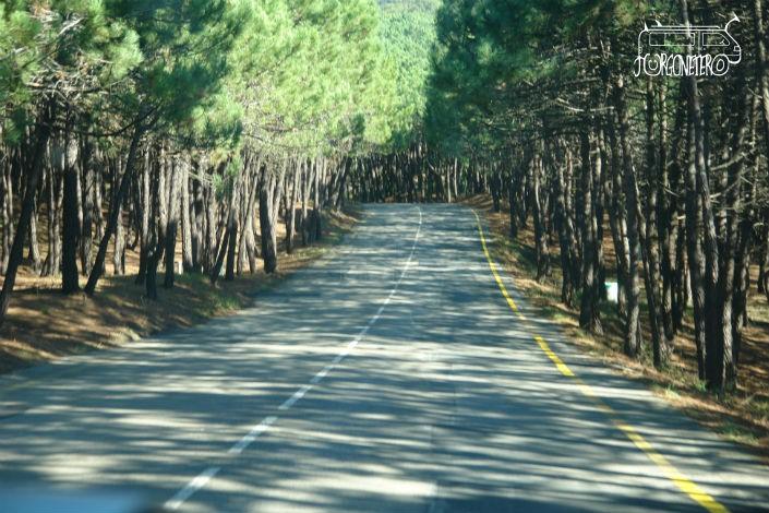 Carretera a Liencres