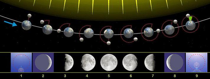 Fases lunares - Mareas